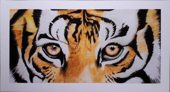 Impression Papier Oeil De Tigre Tigre Dessin Tailles En 11 69 X 5 7 Et 8 25 X 4 1 Pouces