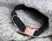 Dog collar ECLIPSE with rose gold colored hardware