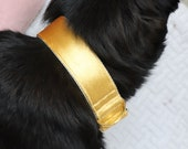 Dog collar and leash GOLD - best luxurious dog collar in elegant style - perfect gift for dog lovers - lovely collar