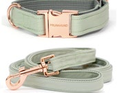 Designer dog collar MINT with rose gold colored hardware