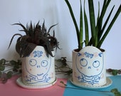 Cheerful Skull handmade and illustrated ceramic flowerpot for small succulents