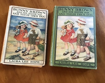 Bunny Brown and His Sister Sue and Their Trick Dog - Laura Lee Hope - 1923 - Original Dust Jacket - Antique Children's Book - Nice Condition