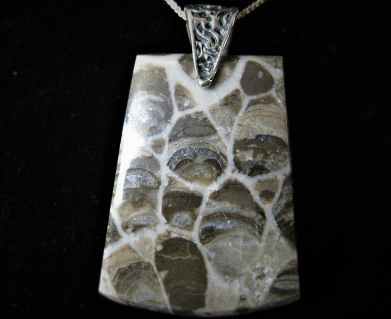 Fossilized Coral wtih Sterling Silver Bail Chain sold image 0