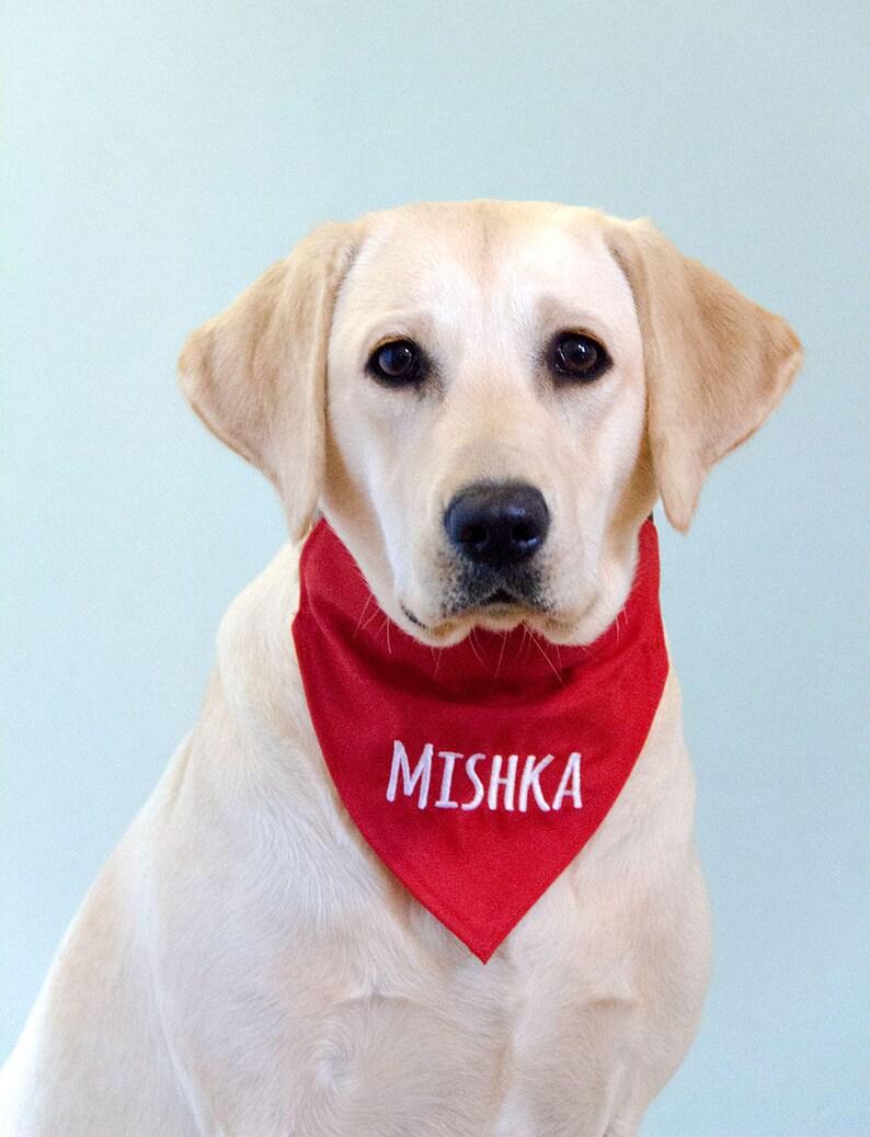ff5a28b44 Dog Bandana Personalized Personalised Dog Bandana with | Etsy