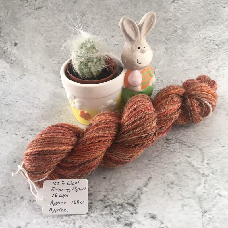 Autumnal Orange Multi coloured Hand Spun 100% Wool DK image 0
