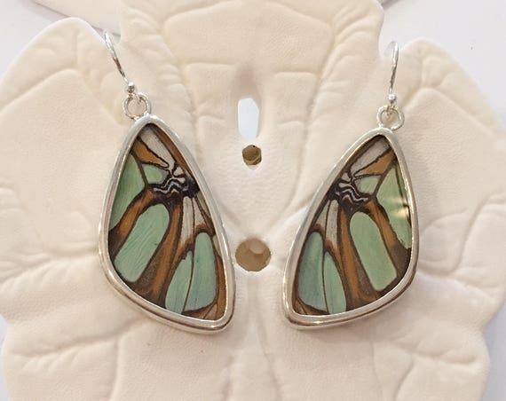 MALACHITE Butterfly Wing Earrings// Butterfly Wing Jewelry// AUTHENTIC Butterfly Wings// Eco Friendly Jewelry// Statement Jewelry