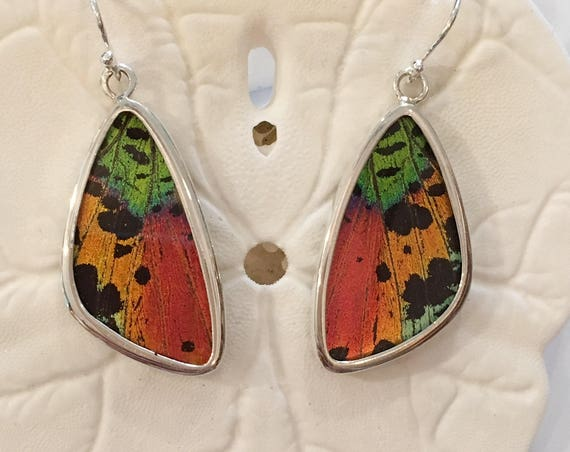 SUNSET MOTH Butterfly Wing Earrings// Butterfly Wing Jewelry// AUTHENTIC Butterfly Wings// Eco Friendly Jewelry// Statement Jewelry