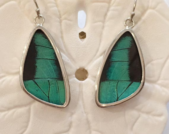 ULYSSES Butterfly Wing Earrings// Butterfly Wing Jewelry// AUTHENTIC Butterfly Wings// Eco Friendly Jewelry// Statement Jewelry