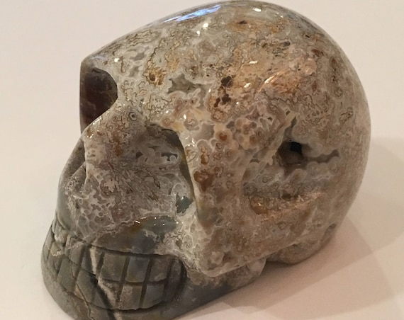 Crazy Lace AGATE Skull// Carved Skull// Healing Gemstones// Home Decor// Healing Tools// Crystal Skull// Agate Skull// Crystal SKULL