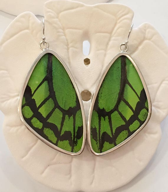 LIME WING Butterfly Wing Earrings// Butterfly Wing Jewelry// AUTHENTIC Butterfly Wings// Eco Friendly Jewelry// Statement Jewelry