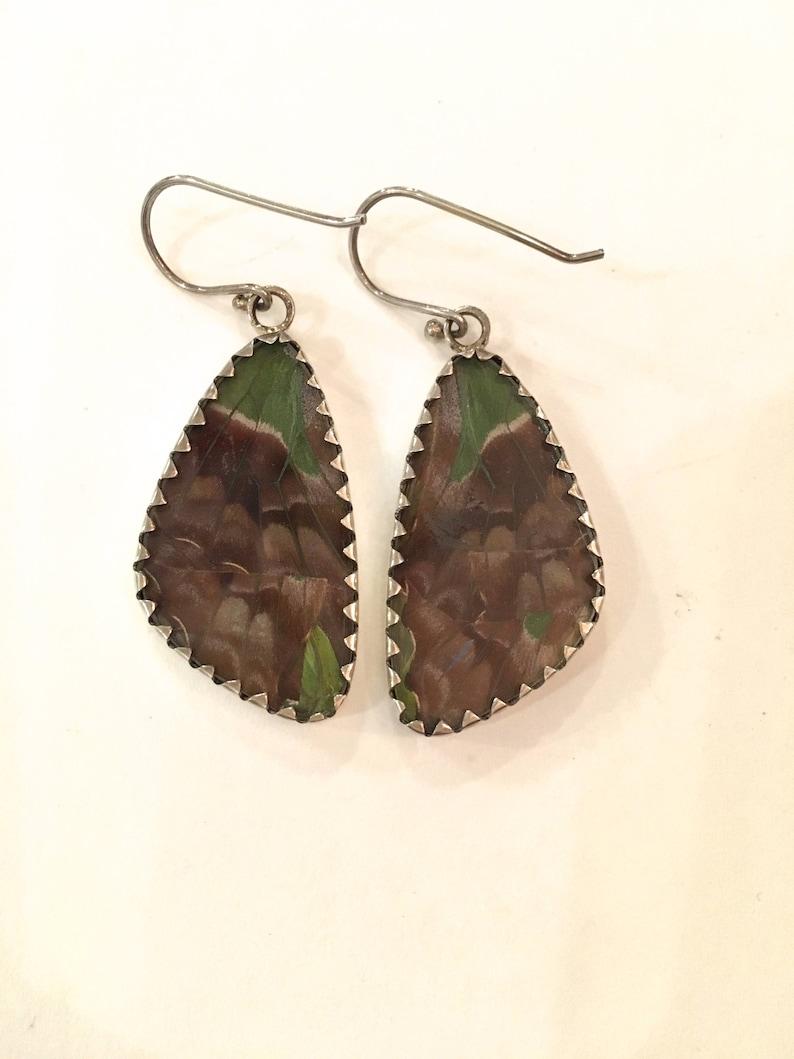 PURPLE SWALLOWTAIL Butterfly Wing Earrings Butterfly Wing Jewelry AUTHENTIC Butterfly Wings Eco Friendly Jewelry Statement Jewelry