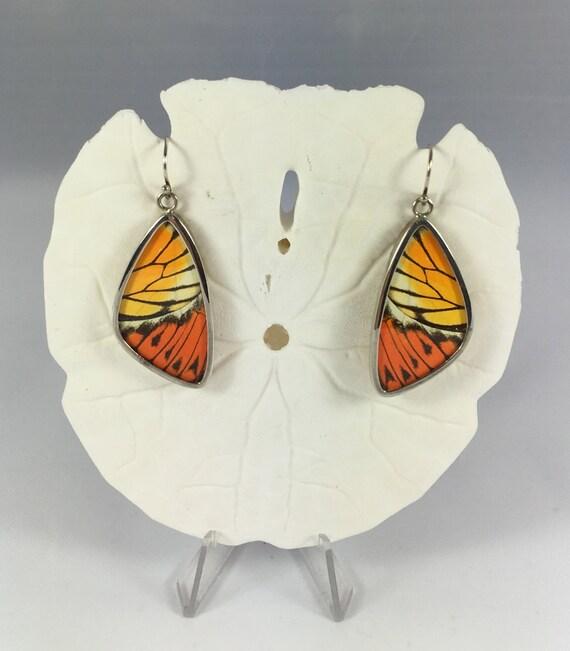 Great Orange Tip Butterfly Wing Earrings, Butterfly Wing Jewelry, AUTHENTIC Butterfly Wings, Eco Friendly Jewelry, Statement Jewelry