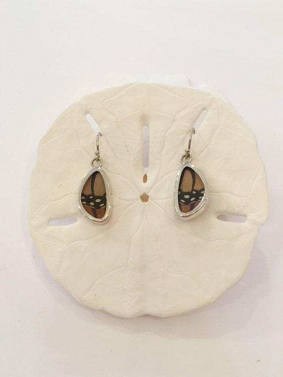 MONARCH Butterfly Wing Earrings// Butterfly Wing Jewelry// AUTHENTIC Butterfly Wings// Eco Friendly Jewelry// Statement Jewelry