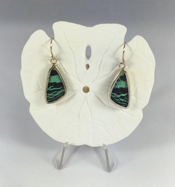 SUNSET MOTH Butterfly Wing Earrings// Butterfly Wing Jewelry// AUTHENTIC Butterfly Wings// Eco Friendly Jewelry// Statement Jewelry