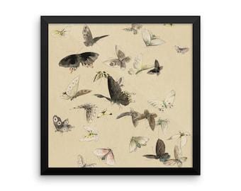 Butterflies Framed Wall Art Print, Butterfly Wall Art, Framed Poster, Botanical, Vintage Poster, Vintage Art Print, Sepia, Vintage Art Deco
