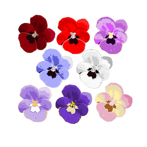 pansy clipart clipart pansies flower clipart spring etsy rh etsy com pansy clip art border pansy border clip art free