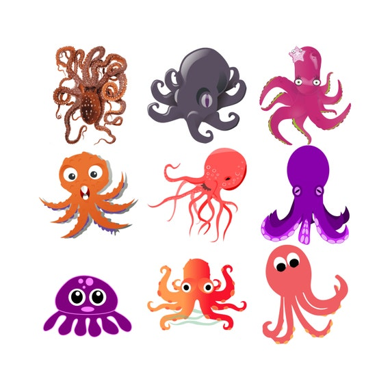 Octopus Clip Art pulpo Clipart Clip Art pulpo pulpo de | Etsy