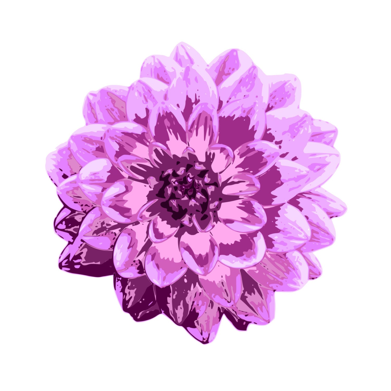 Purple dahlia clipart purple flower clipart invitation etsy zoom izmirmasajfo