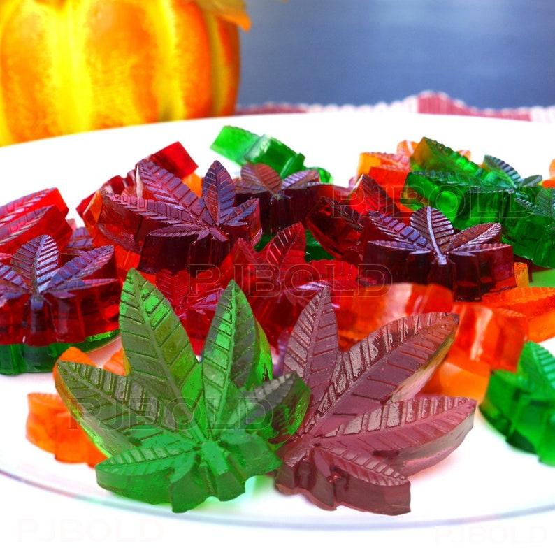 Marijuana Cannabis Hemp Leaf Silicone Molds Candy Weed Pot Mold Chocolate Gummy USA Free Shipping