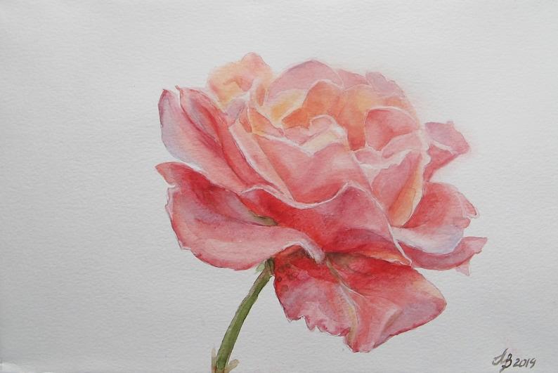 Pink Rose 3 Original Painting Watercolor Flowers Roses Etsy