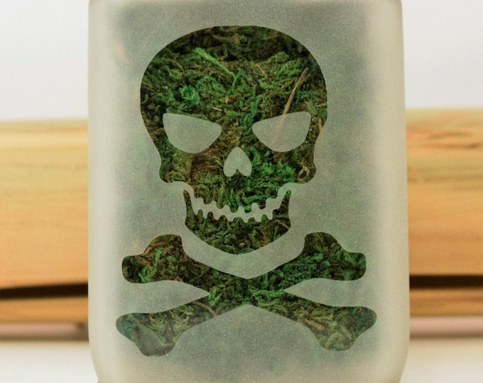 Jolly Roger Stash Jar - Weed Accessories, Stash Jars and Stoner Gifts - Ganja Gift - Skull & Crossbones - Stoner Accessories - Weed Jars