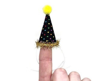 Mini Polka Dot Party Hat, Hedgehog Party Hat, Chicken Party Hat, Ferret Party Hat, Multicolor, Black Birthday Hat