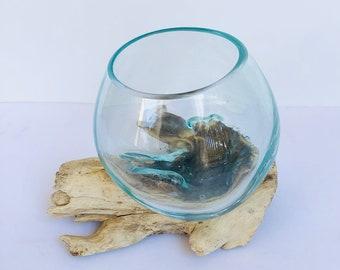 Molten Glass on Driftwood Base-Air Plant Terrarium-Fish Bowl-Eco Planter-Hand Blown Terrarium Glass-Driftwood Decor-Unique Gifts