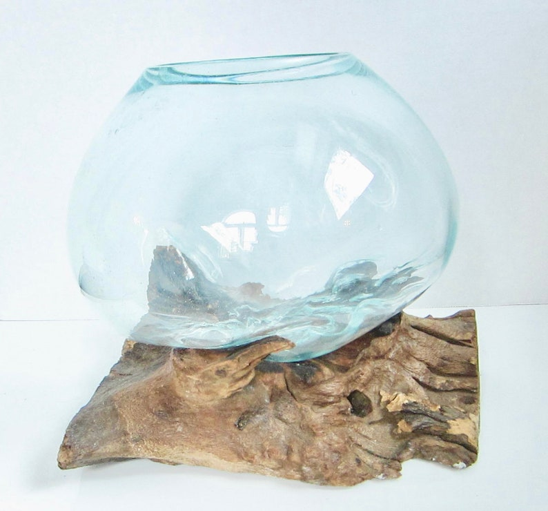 Driftwood Blown Glass Fish Aquarium Or Teranium Fish Fish & Aquariums