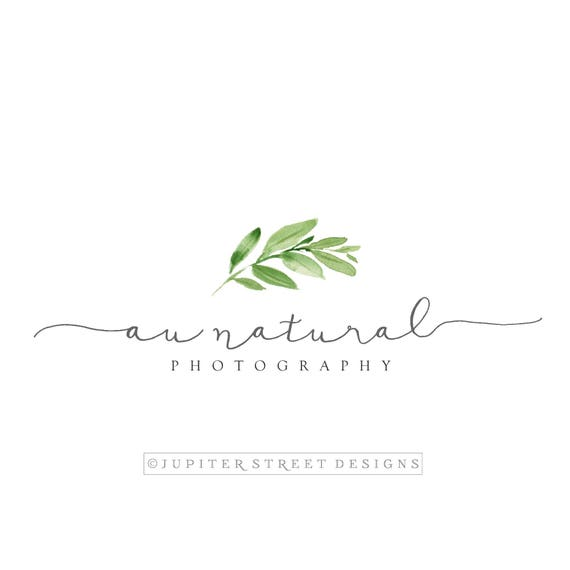 logo design premade logo tree logo branch logo nature etsy logo design premade logo tree logo branch logo nature logo logo photography logo branding kit