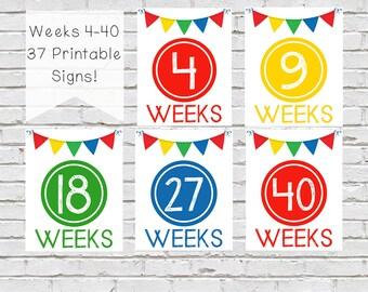Weekly Pregnancy Signs, Weekly Pregnancy Countdown, Colorful Pregnancy Countdown, Pregnancy Progress Signs, Week By Week Belly Sign