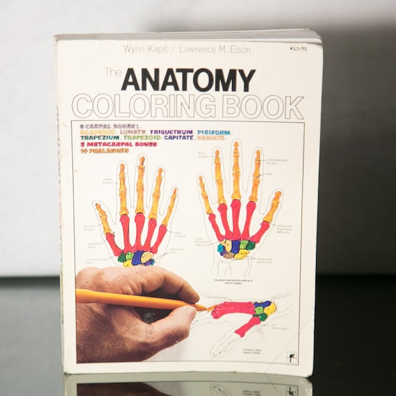 The Anatomy Coloring Book 1970s Version Wynn Kapit