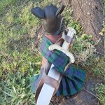 Braveheart dog costume, medieval costume, Halloween dog costume