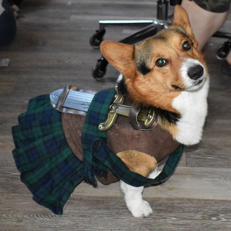 Braveheart dog costume medieval costume Halloween dog image 0