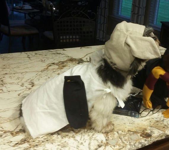 dobby dog costumes