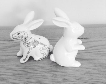 Anatomical skeleton Bunny rabbit salt and pepper shakers
