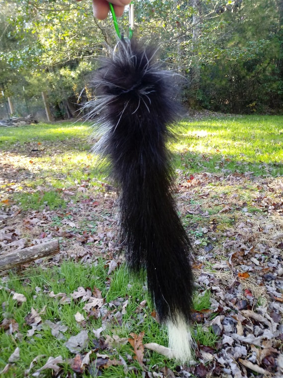 Real Skunk Tail Keychain Unusual Natural Markings Not Dyed Etsy