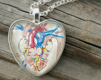 Anatomical heart necklace. Hand-Painted watercolor miniature painting | Nurse gift | heart jewelry | Med student gift | Steampunk jewelry