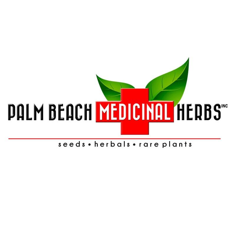 Krishna Holy Basil Tea - Pure Herbal Tea Series by Palm Beach Medicinal  Herbs - 100% Natural