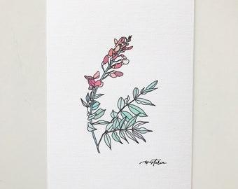 Wisteria Floral Illustration