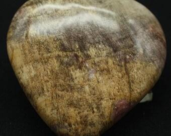 Petrified Wood Heart, Madagascar - Mineral Specimen for Sale