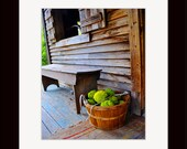 5 X 7 Matted Color Photograph of a Country Homestead