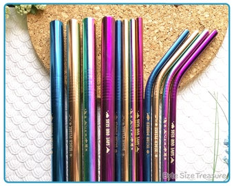 Stainless Steel Reusable Straw Sets // Eco Friendly Metal Straws // Straw Set with Box // 4 Color Sets