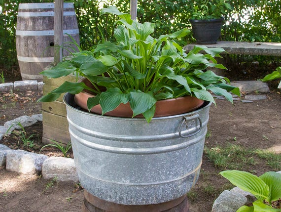 Galvanized Wash Pot With Drop Handles Large Wash Tub Planter Etsy