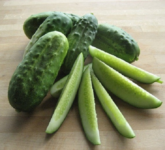 Organic OP NON-GMO Cucumber seeds Home made Pickles high yielding great fresh or pickled small white spines and a crisp interior