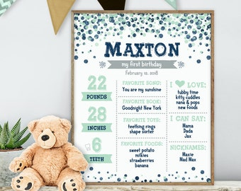 Mint and Silver Glitter First Birthday Sign / Navy Confetti, Polka Dots / Baby Facts, Baby Stats ▷ Printable File {or} Printed & Shipped