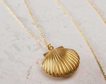 Clam shell loquet necklace