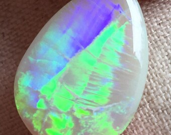 6.2ct Vibrant Light Opal with Trilobite Pattern Lines