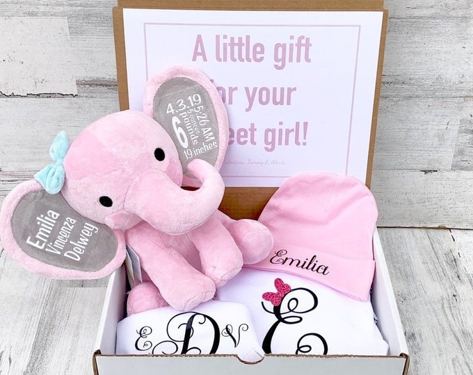Newborn Baby Gift Box - Personalized Elephant, Onesie, Bib, and Beanie - Newborn Box of Gifts - Baby Statistics and Personalized Attire