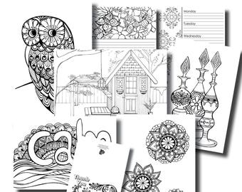 October Week 2 Platinum Subscription Package - Colouring In Pack