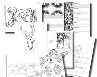 November Week 1 Platinum Subscription Package - Colouring In Pack
